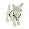 "Lupine 1/2"" Party Time 9-14"" Roman Harness"