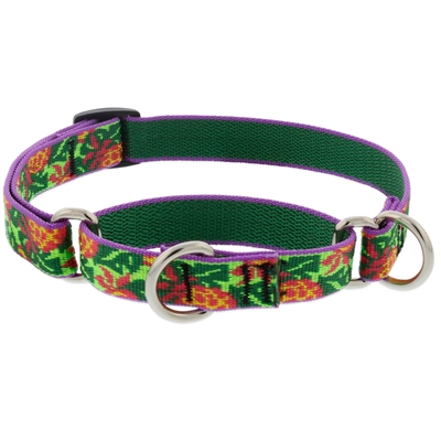 "Retired Lupine 3/4"" Pina Colada 10-14"" Martingale Training Collar"