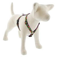 "Retired Lupine 3/4"" Pina Colada 12-20"" Roman Harness"