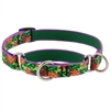"Retired Lupine 3/4"" Pina Colada 14-20"" Martingale Training Collar"
