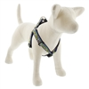 "Lupine 1"" Peeking Duck 19-28"" Step-in Harness"