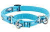 "Lupine 3/4"" Penguin Party 10-14"" Martingale Training Collar"