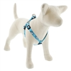 "LupinePet 3/4"" Penguin Party 20-30"" Step-in Harness - Medium Dog MicroBatch"