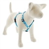 "Lupine 3/4"" Penguin Party 20-32"" Roman Harness - Medium Dog"