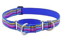 "Lupine 1"" Ripple Creek 15-22"" Martingale Training Collar"