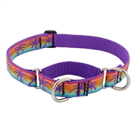 "Lupine 1"" Sunset Beach 15-22"" Martingale Training Collar MicroBatch"