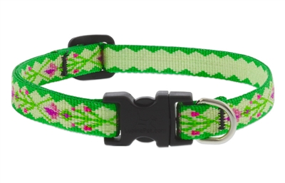 "Lupine 1/2"" Scottish Thistle 8-12"" Adjustable Collar"