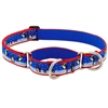 "LupinePet 1"" Snow Dance 19-27"" Martingale Training Collar - Large Dog MicroBatch"