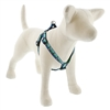 "Retired Lupine 3/4"" Sitting Duck 20-30"" Step-in Harness - Medium Dog"