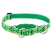 "Lupine 1"" Shamrocks 15-22"" Martingale Training Collar Ships in February 2021"