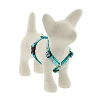 "Lupine 1/2"" Summer Treat 9-14"" Roman Harness"