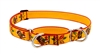 "Lupine 1"" Turkey Trot 19-27"" Martingale Training Collar"
