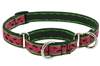 "RETIRED Lupine 3/4"" Watermelon 10-14"" Martingale Training Collar"