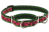 "Lupine 3/4"" Watermelon 10-14"" Martingale Training Collar Ships in July 2021"