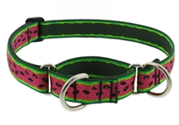 "Lupine 1"" Watermelon 15-22"" Martingale Training Collar"