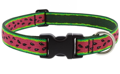 "Lupine 1"" Watermelon 16-28"" Adjustable Collar"