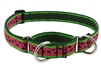 "Lupine 1"" Watermelon 19-27"" Martingale Training Collar"