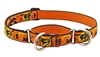 "Retired Lupine 1"" Wicked 15-22"" Martingale Training Collar"