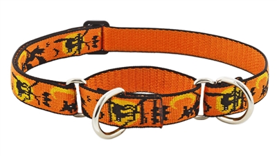 "Retired Lupine 1"" Wicked 19-27"" Martingale Training Collar"