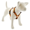 "Lupine 1"" Wicked 20-32"" Roman Harness"