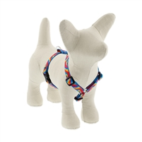 "Lupine 1/2"" Lollipop 9-14"" Roman Harness"