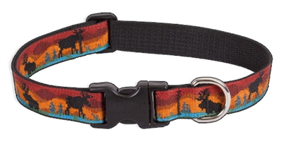 "LupinePet 1"" Moose on the Loose 12-20"" Adjustable Collar"