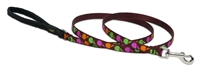 Retired Lupine Candy Apple 6' Padded Handle Leash - Small Dog or Cat