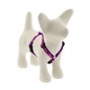 "Lupine 1/2"" Aloha 9-14"" Roman Harness - Small Dog LIMITED EDITION"