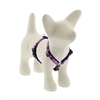 "LupinePet 1/2"" America 9-14"" Roman Harness - Small Dog MicroBatch"