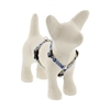 "LupinePet 1/2"" Fair Isle 9-14"" Roman Harness - Small Dog MicroBatch"
