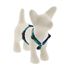 "Lupine 1/2"" Lucky 12-20"" Roman Harness MicroBatch"