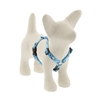"Lupine 1/2"" Penguin Party 12-20"" Roman Harness"