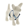 "Retired Lupine 1/2"" Sail Away 9-14"" Roman Harness - Small Dog"