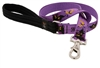 "LupinePet 1"" Haunted House 6' Long Padded Handle Leash - Large Dog MicroBatch"