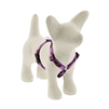 "LupinePet 1/2"" Haunted House 9-14"" Roman Harness - Small Dog MicroBatch"