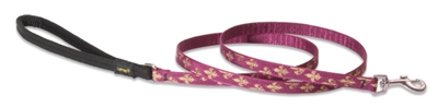 Lupine Retired Royal Gold 6' Padded Handle Leash