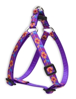 "Retired Lupine Spring Fling 12-18"" Step-in Harness"