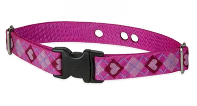 "LupinePet 1"" Puppy Love Underground Containment Collar"