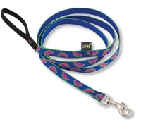Retired Lupine Watermelon 4' Padded Handle Leash - Small Dog or Cat