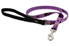"Retired Lupine 1/2"" Haunted House 4' Padded Handle Leash"