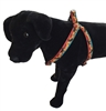 "LupinePet Moose on the Loose 19-28"" Step-in Harness - Large Dog"