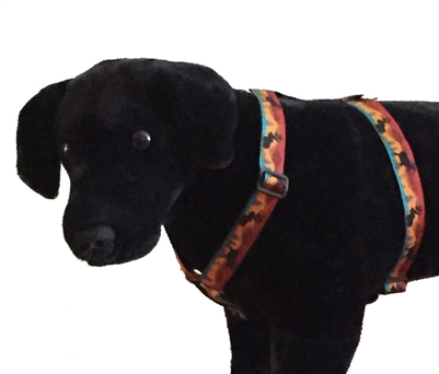 "Lupine 1"" Moose on the Loose 24-38"" Roman Harness"