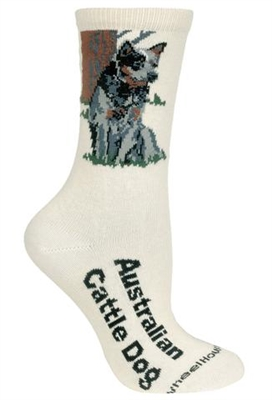 Wheel House Design Australian Cattle Dog on Natural Socks (9-11)