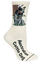Wheel House Design Australian Cattle Dog on Natural Socks (Size 10-13)