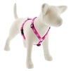 "Lupine 3/4"" Puppy Love 12-20"" Roman Harness"