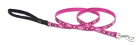 "Lupine 1/2"" Puppy Love 4' Padded Handle Leash"