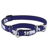 "Lupine Polar Paws 10-14"" Combo/Martingale Training Collar - Medium Dog"