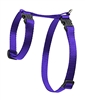 "Lupine 1/2"" Purple 12-20"" H-Style Cat Harness"