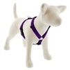 "Lupine 1"" Purple 20-32"" Roman Harness"