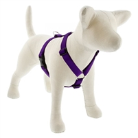 "Lupine 1"" Purple 24-38"" Roman Harness"